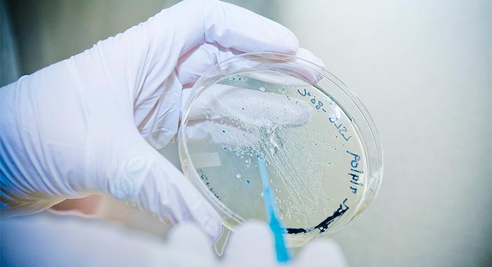 biotecnologia-laboratorio