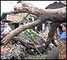 birmania-ciclon.jpg