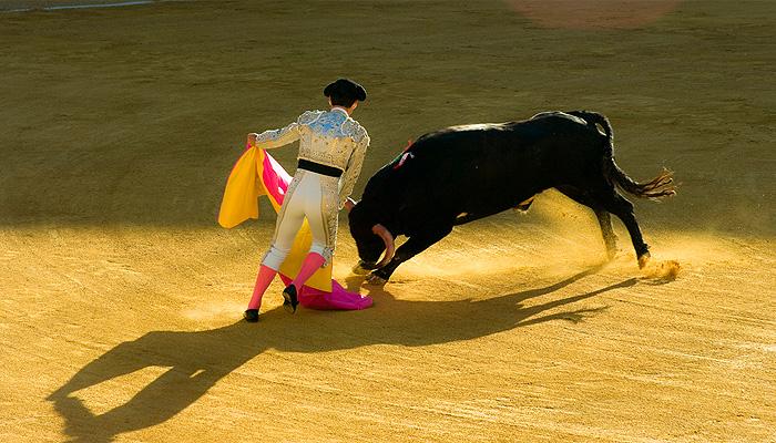 corrida-toros-arena