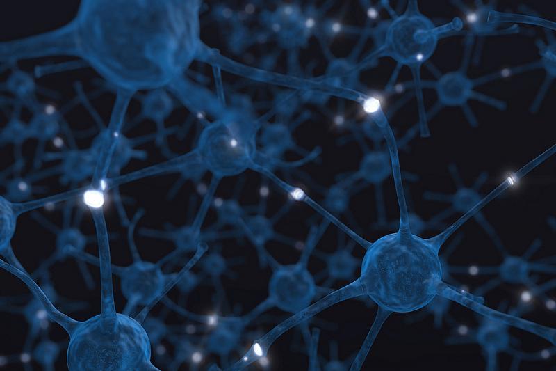 neurona-cerebro